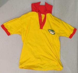 Yellow  Polo Shirt with Robin Hamilton and Aston Martin on Back, Green logo on front